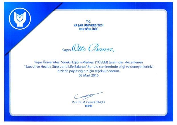 Yasar Universitesi Sertifika_03-2016